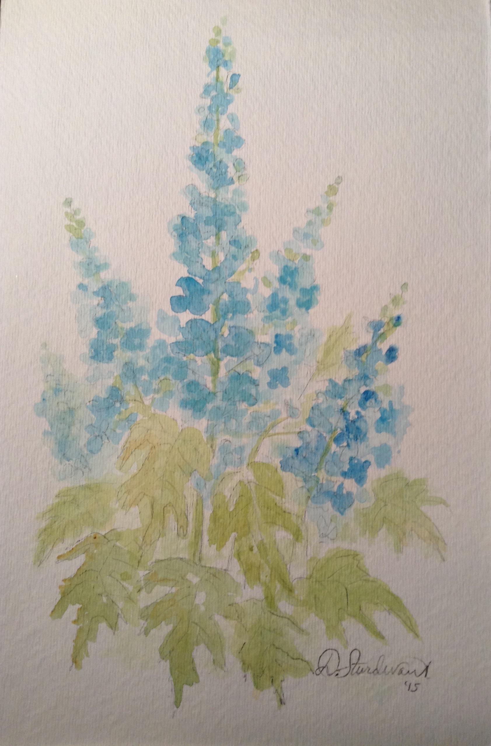 delphinium blues